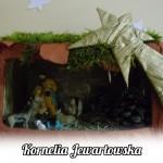 15 kornelia jewartowska